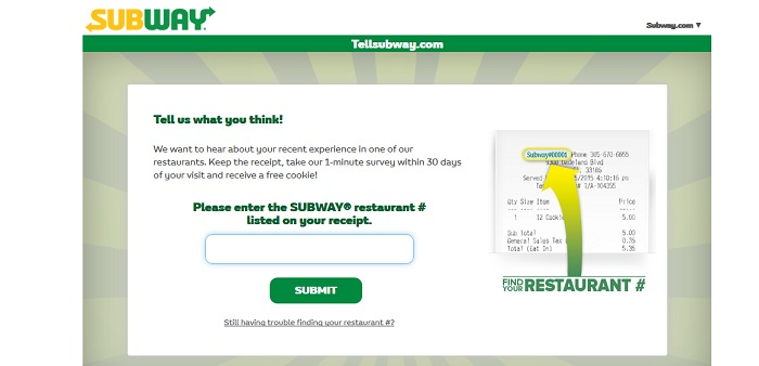 Tellsubway Customer Satisfaction Survey